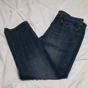 GAP Premium Straight Leg Jeans NWOT